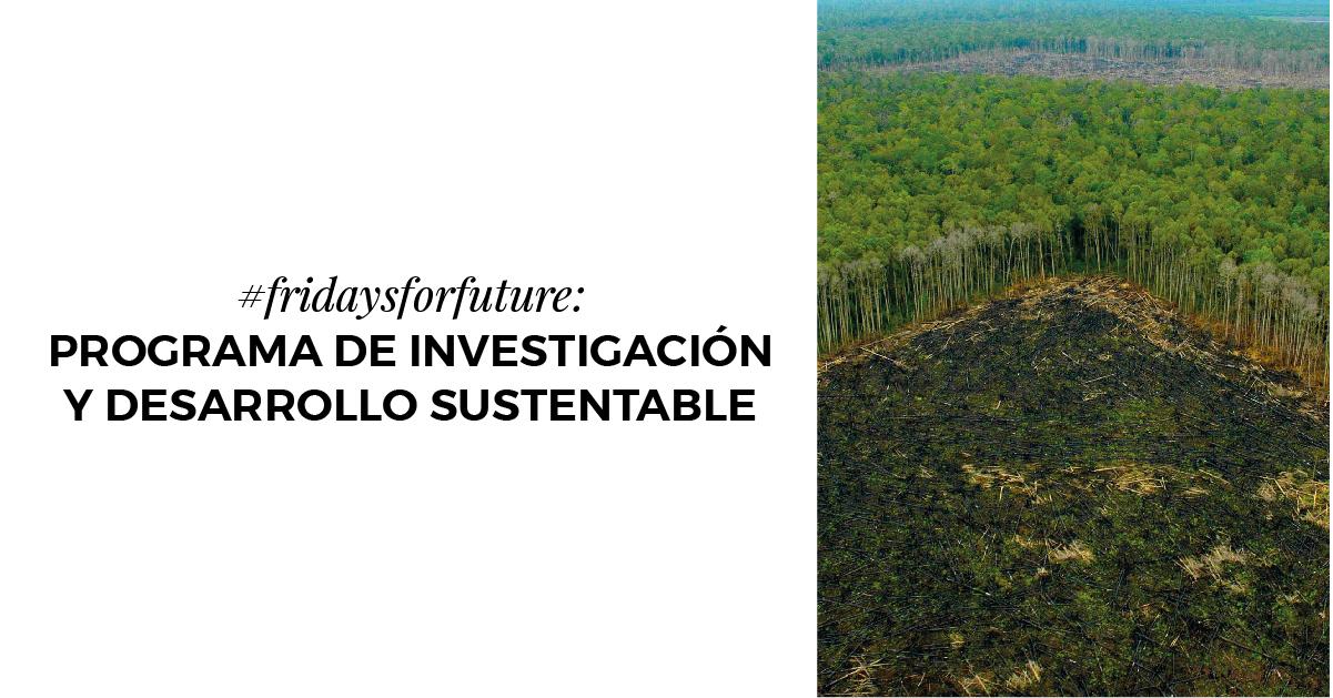 #fridaysforfuture: Programa de Investigación y Desarrollo Sustentable